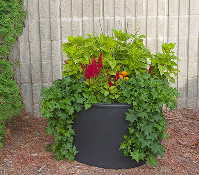 Avenue self watering planter - Equinox