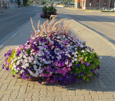 Avenue self watering planter - minnedosa