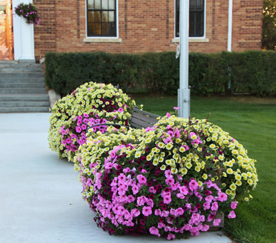 Avenue self watering planter-TOWNOFFICE