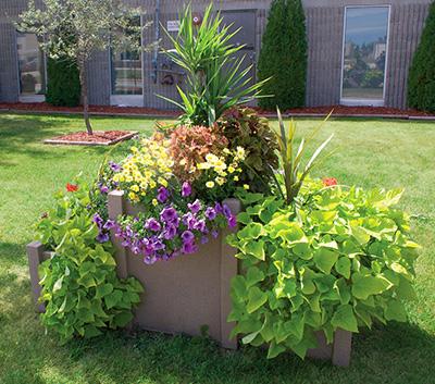 Castle self watering planter- at equinox