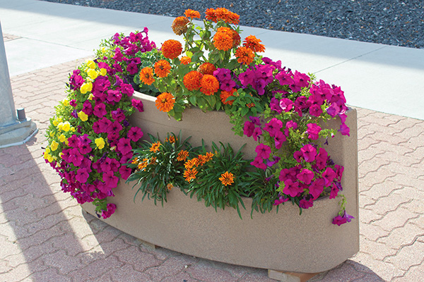 Plaza Self-Watering Planter  - Wholesale Planters and Flower Boxes | Desert Planters by Equinox