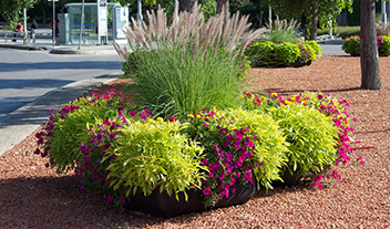 Save money on water and maintenance with self-watering planters | Desert Planters by Equinox