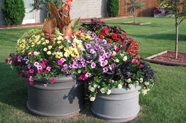 Promenade Self-Watering Planter  - Wholesale Planters and Flower Boxes | Desert Planters by Equinox