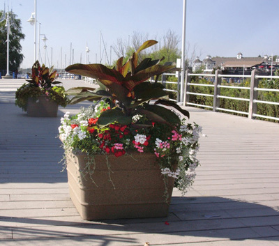 Boardwalk Self Watering Planter -