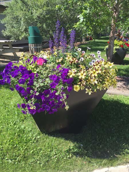 horizon self watering fiberglass planter- location