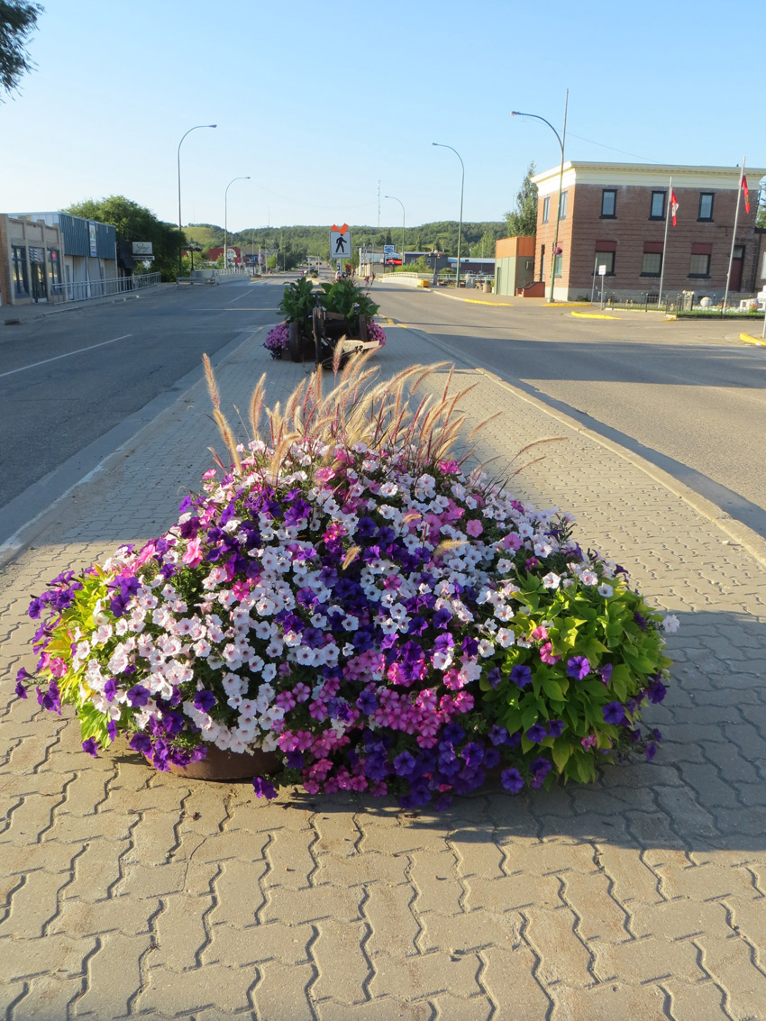 Minnedosa Avenue Planter Beautiful Street view