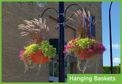 Hanging Baskets for Public Spaces and Home